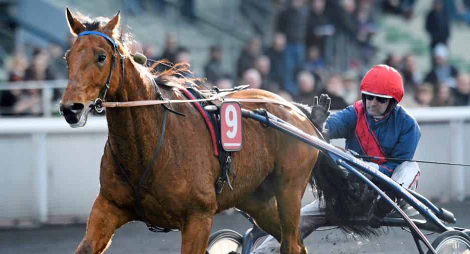 Bazires segermaskin Aubrion du Gers tog fjärde segern på lika många starter under vintermeetinget och den sjätte raka. Foto Gerard Forni