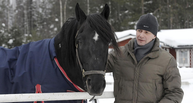 Järvsöfaks står i hagen på Jan-Olov Perssons gård och får besök av sin gamla kusk Jorma Kontio. Foto Hanold/ALN