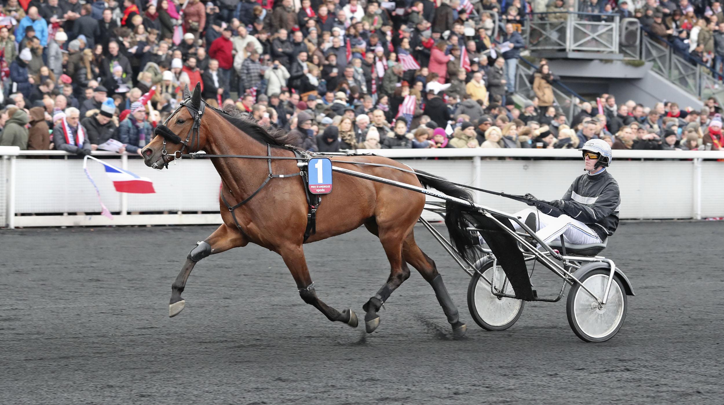Treasure Kronos och Christoffer Eiksson värmer inför Prix d'Amérique-starten. Foto Mia Törnberg