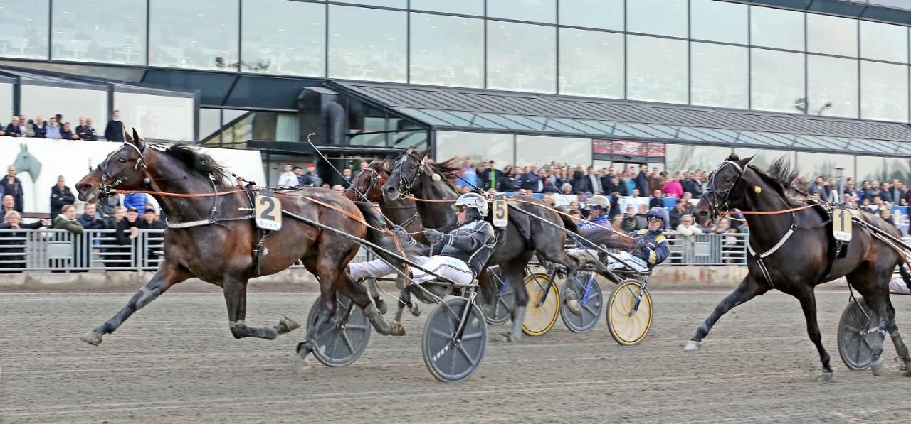 Robert Berghs Kadett C.D. fick chansen från rygg ledaren och avgjorde enkelt. Foto Jeannie Karlsson