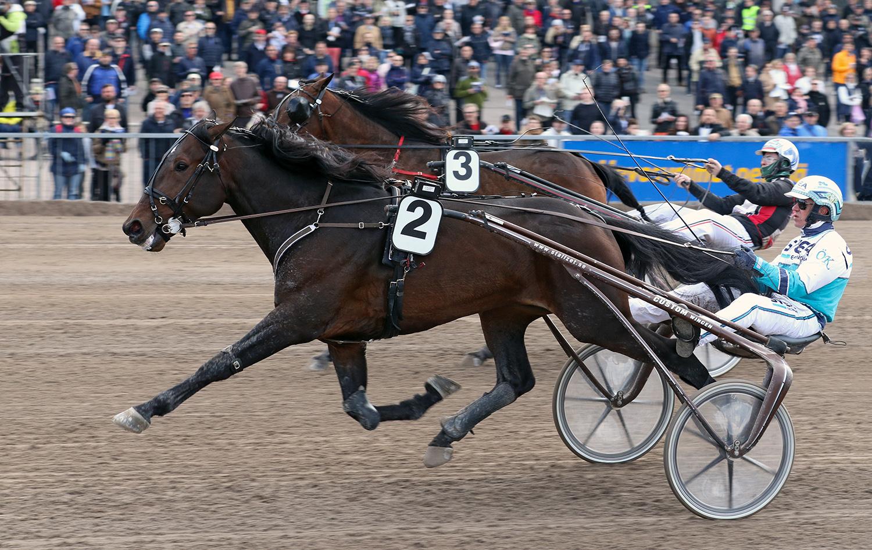 Love Matters och Örjan Kihlström var först över mållinjen. Foto Anu Leppänen/ravinetti.fi