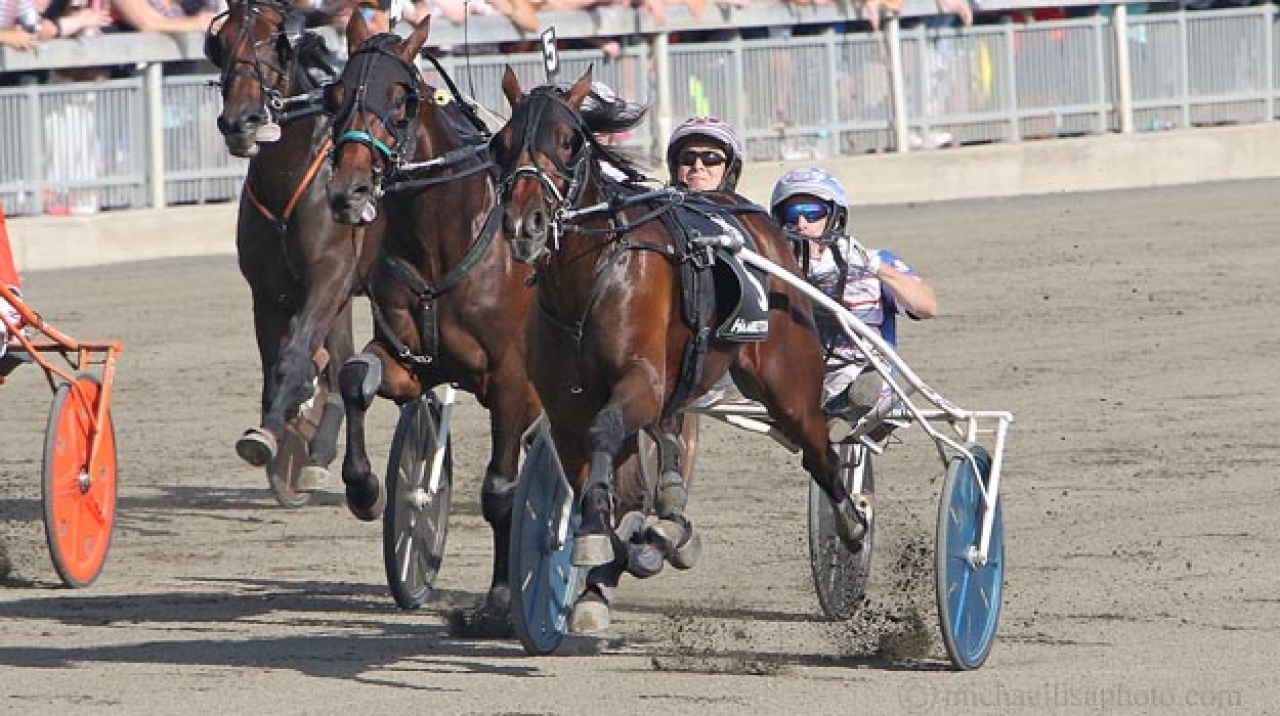 Marion Marauder vid sin seger i Hambletonian Stakes ifjol. Foto Adam Ström/stalltz.se