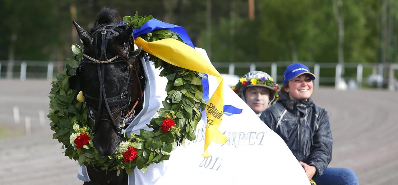 Hemmahästen On Track Piraten är favorit i finalen i Sommartravet. Foto Micke Gustafsson/ALN
