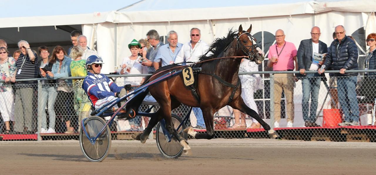 Racing Mange är en av två spikbud från Joakim Lövgren. Foto Mia Törnberg