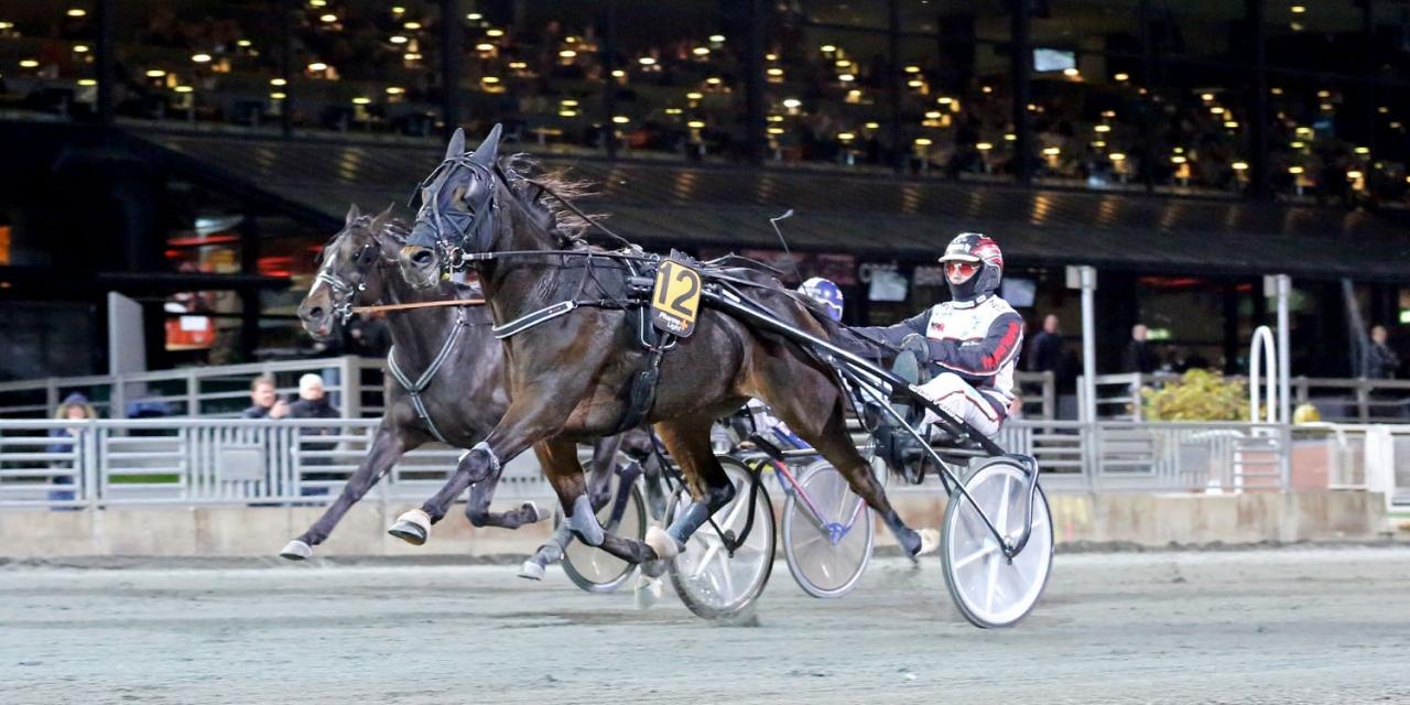 Selmer I.H. vann i comebacken och siktas nu mot Solvalla. Foto Mia Törnberg