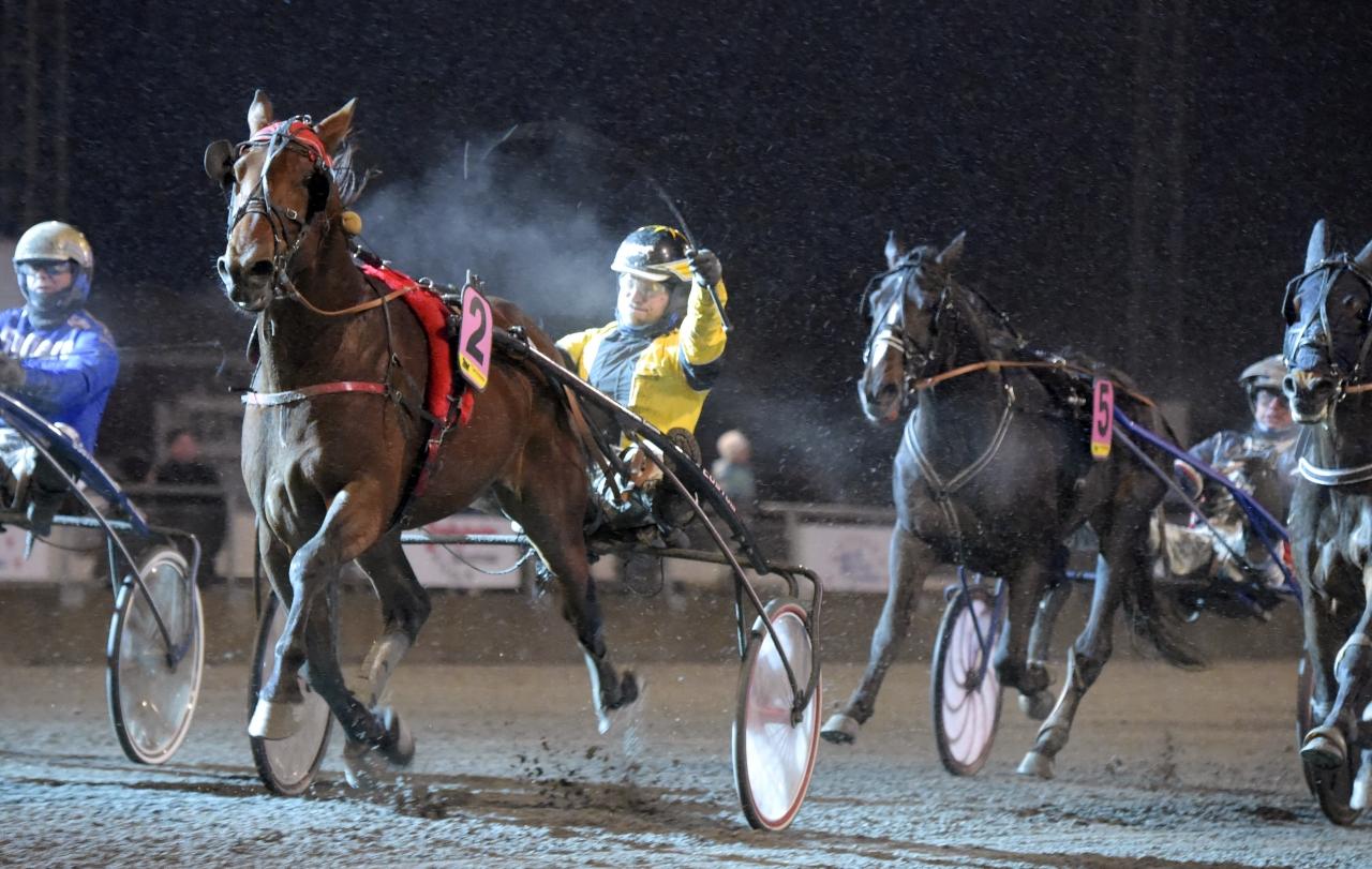 Lucifer Lane och Johan A Nilsson vann finalen av Breeders Crown för treåriga hingstar och valacker under fjolåret. Även år 2018 inledes med en seger i BC-sammanhang. Foto Martin Langels/ALN