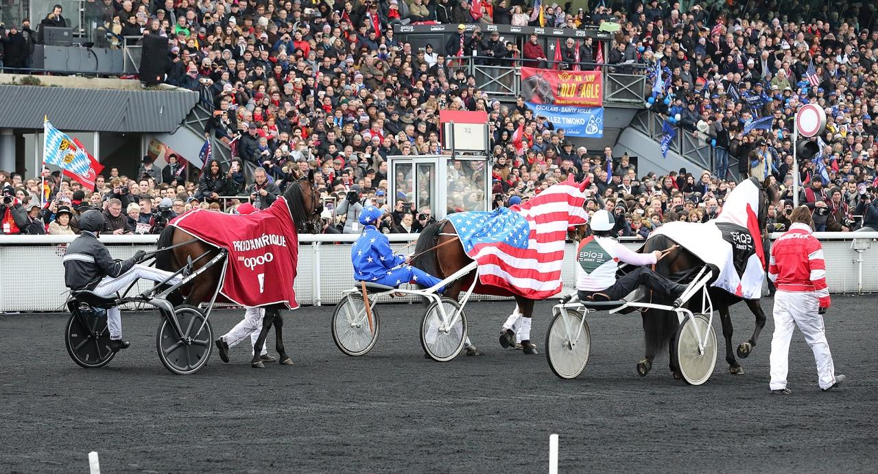 Att göra en omstart i Prix d'Amérique kommer kosta 4.500 euro (46.000 svenska kronor) och åtta dagars avstängning! Foto Mia Törnberg