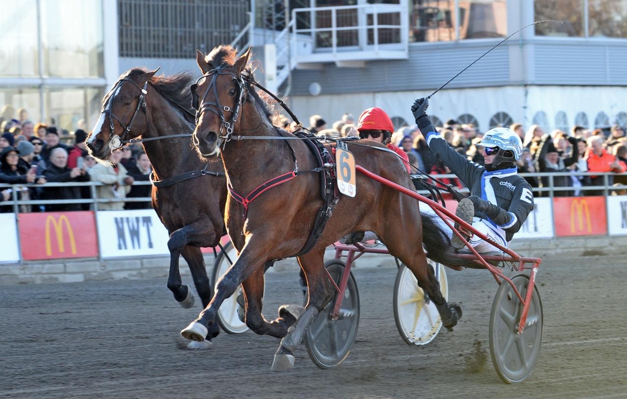Pastore Bob vann Prins Carl Philips Jubileumspokal. Ikväll blev han inbjuden till Seinäjoki Race vilket körs lördag den 21 april med 70.000 euro i förstapris. Foto: MVA Foto