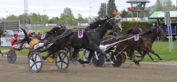 Tommi Kylliäinen gör segergest bakom Workout Wonder, glad över segern och en Elitloppsbiljett. Foto Christer Norin/ALN