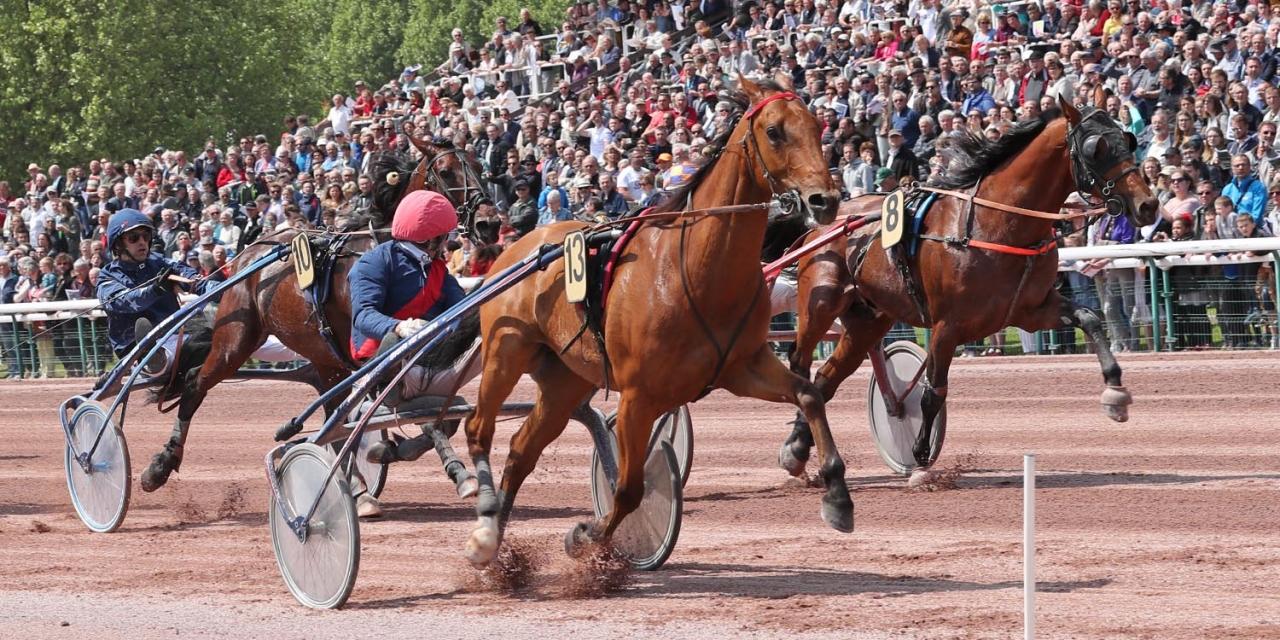 Aubrion du Gers vid fjolårets vinst i Prix des Ducs de Normandie. Foto Mia Törnberg/Sulkysport