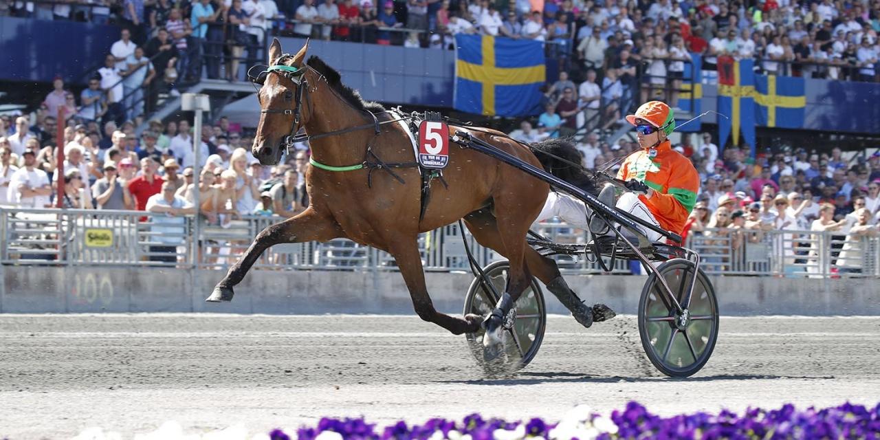 Billie de Montfort kan komma att starta i Kymi Grand Prix lördag den 15 juni. Foto: Sulkysport