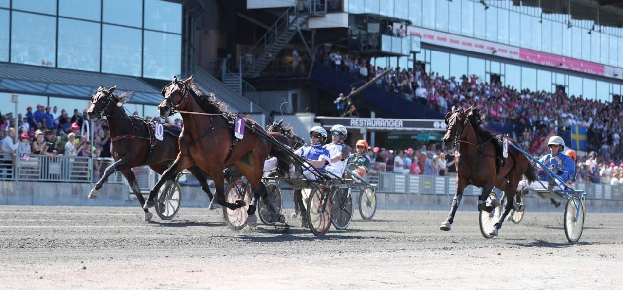 Svante Båths Global Withdrawl vann Treåringseliten ifjol med Erik Adielsson. Foto Jeannie Karlsson/Sulkysport