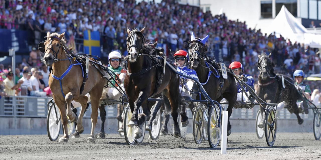 Lome Brage hade allt under kontroll från spets i Elitkampen 2018. Foto Mia Törnberg