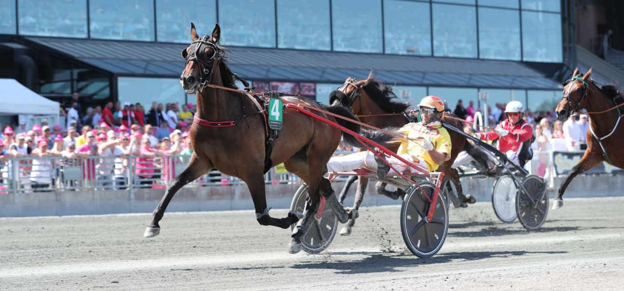 Zabriskie O.K. och Alessandro Goccadoro vid en tidigare seger. Foto: Jeannie Karlsson/Sulkysport