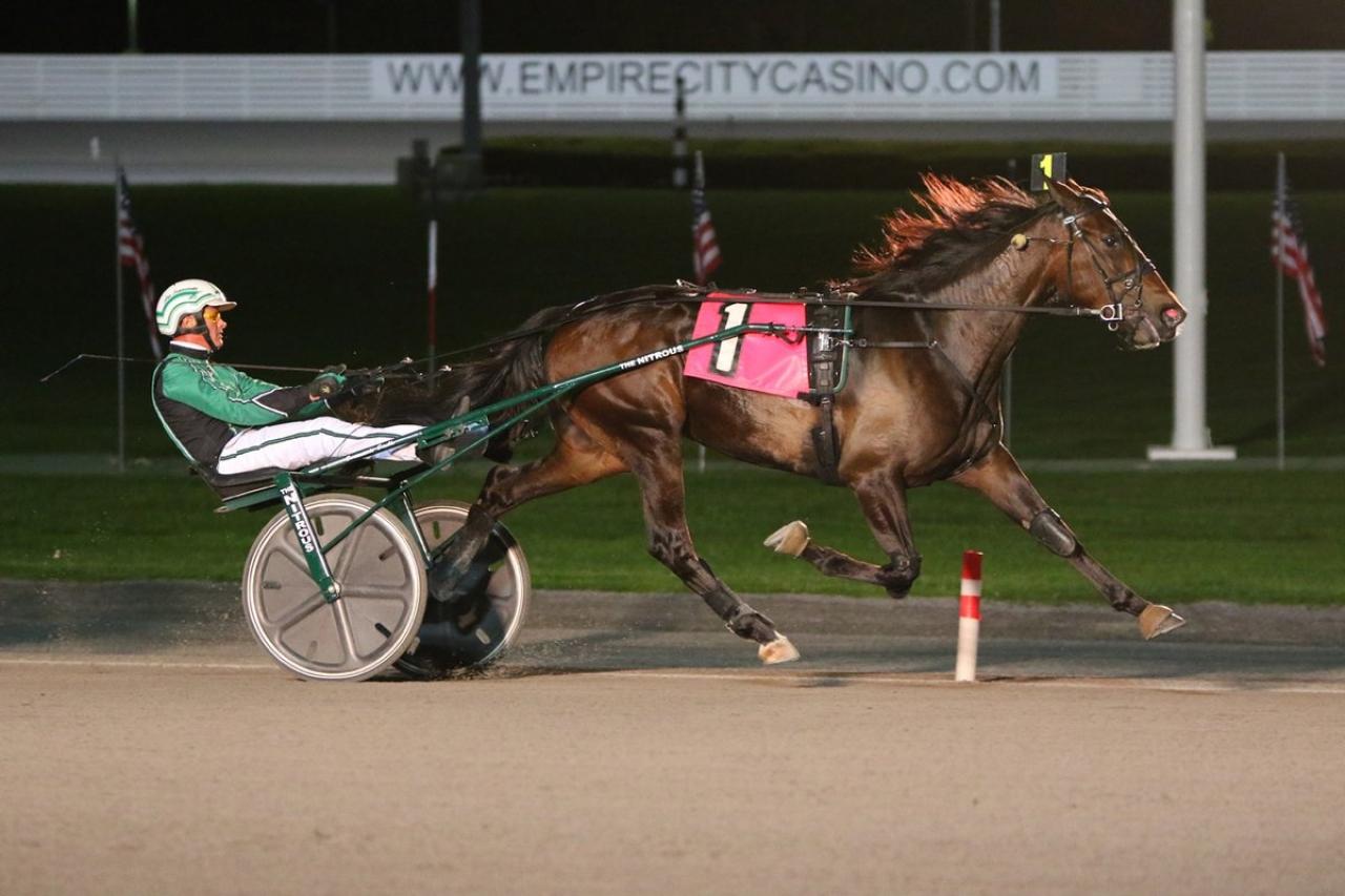 Lucky Ava vid en tidigare triumf på Yonkers Raceway Foto: Mike Lizzi