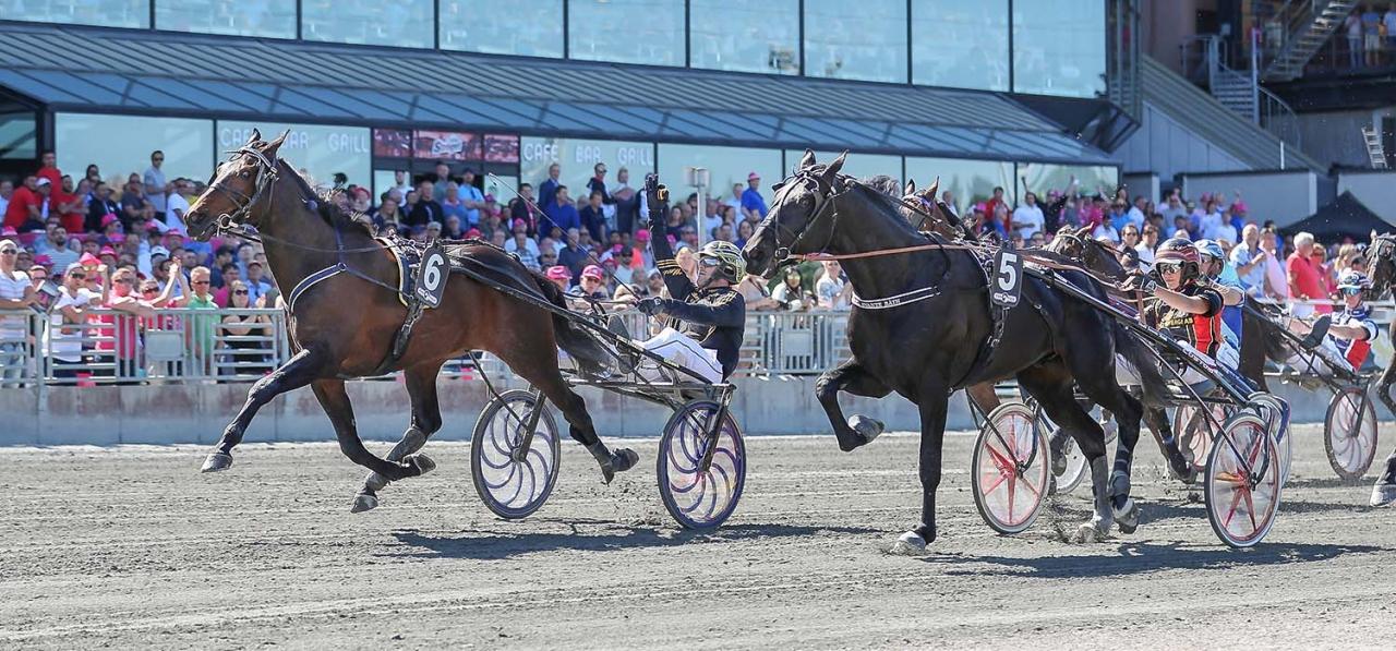 I söndags vann Marc Elias Lärlingseliten på Solvalla. Fyra segrar och en andraplats har lärlingen i de fem senaste starterna. Foto Jeannie Karlsson/Sulkysport
