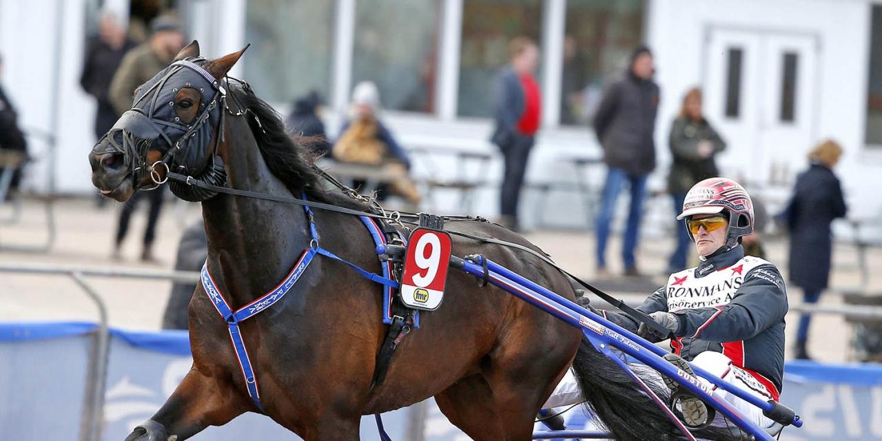 Bålsta Palema med Mikael J Andersson. Foto Micke Gustafsson/ALN