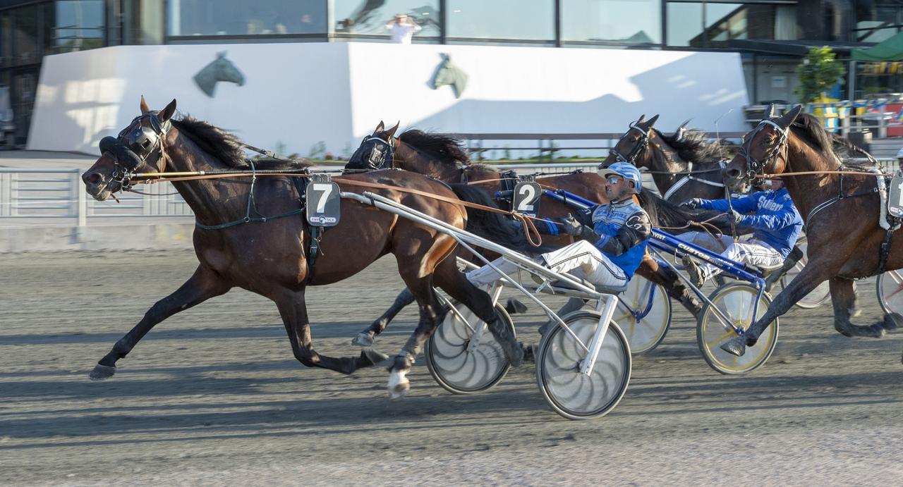 Raoul Engblom-tränade Ad Hoc och Carl Johan Jepson blir hårt betrodda inom kvällens V86-omgång i Lindesberg. Foto Tommy Andersson/ALN