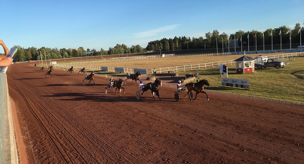 Mariehamn tävlade fredag-lördag och många hästar startade båda dagarna. Foto Mathias Hedlund
