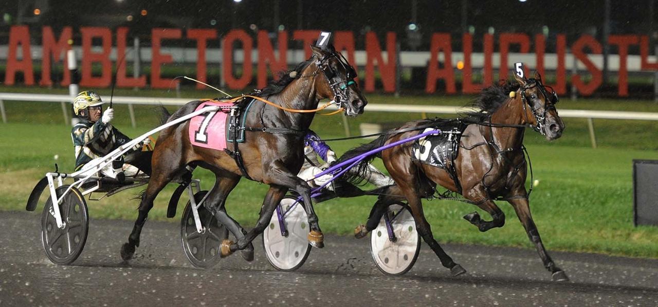 Starita (invändigt) vid en tidigare seger. Foto Adam Ström/Stalltz.se