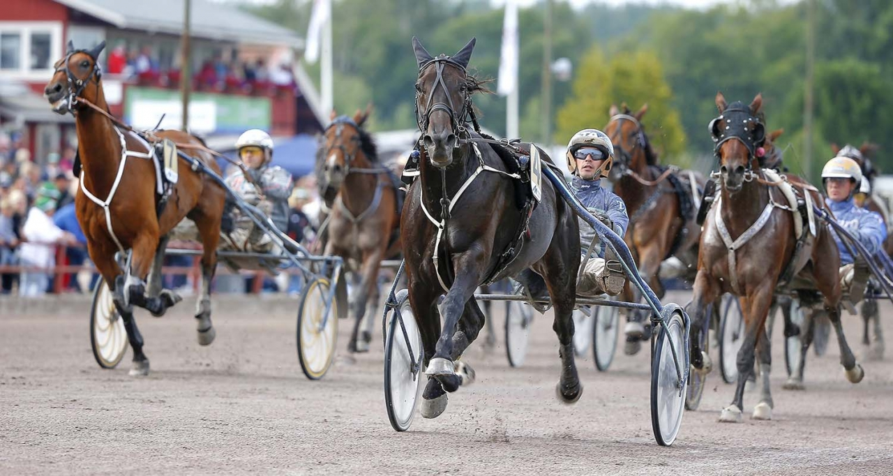 Highspirit gör sista starten hos Flemming Jensen. Efter kvällens lopp går hästen tillbaka till Troels Andersen, som på bilden vinner V75-lopp med elvaåringen i Rättvik i augusti ifjol. Foto Micke Gustafsson/ALN