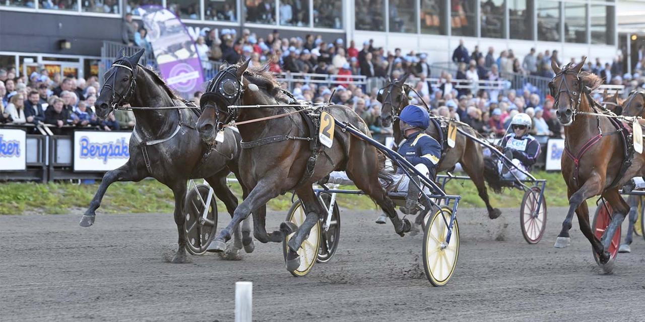 Svaret i Sundsvall Open Trot var Milligan's School och Ulf Eriksson 2018. Foto: Christer Norin/ALN