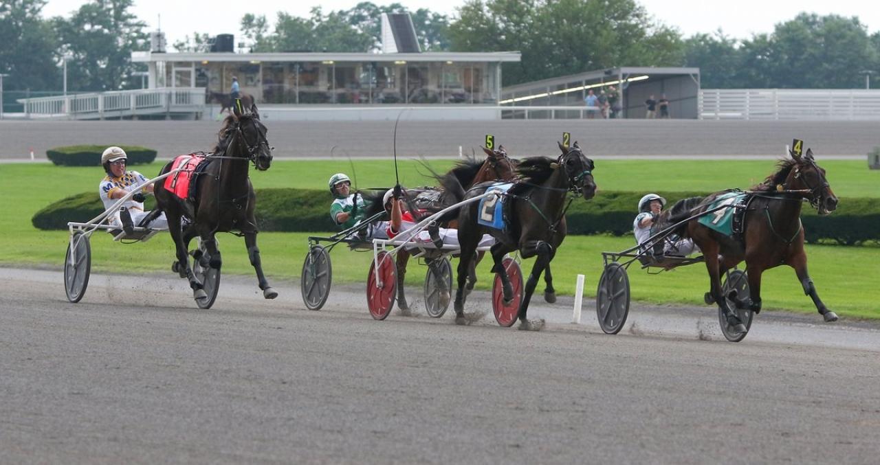 Natalie Hanover var en av Åke Svansteds fyra vinnare i natt och här vinner stoet försök i New York Sire Stakes. Foto: Mike Lizzi