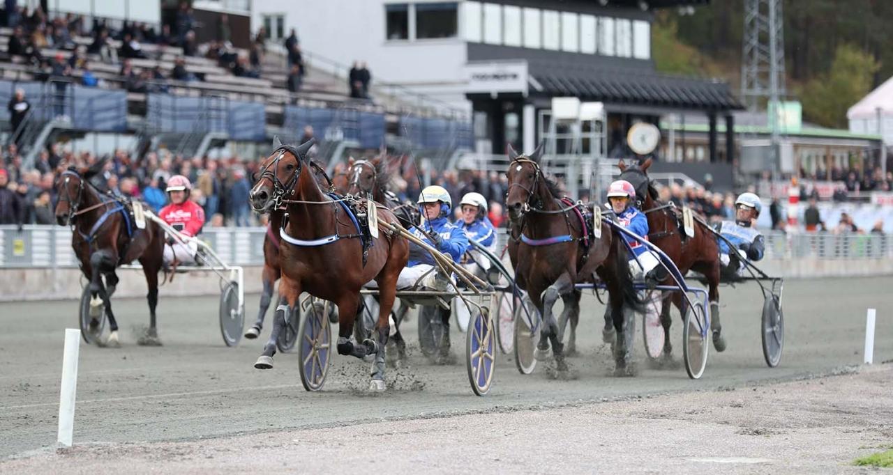 Chianti och Björn Goop. Foto Jeannie Karlsson/Sulkysport