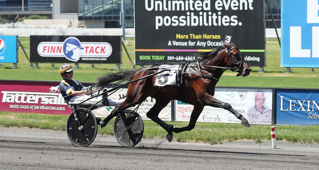 Stall Courants Green Manalishi startar på Pocono Downs på fredag i försök till Breeders Crown. Foto Jeannie Karlsson/Sulkysport