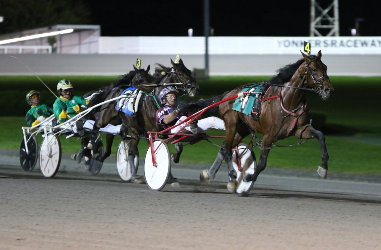 Helpisontheway vid finaltriumfen i New York Sire Stakes tidigare i år. Foto: Mike Lizzi