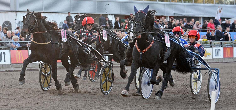 Myhreng Jerker och Olav Mikkelborg, Unionskampen, Sulkysport, Travsport