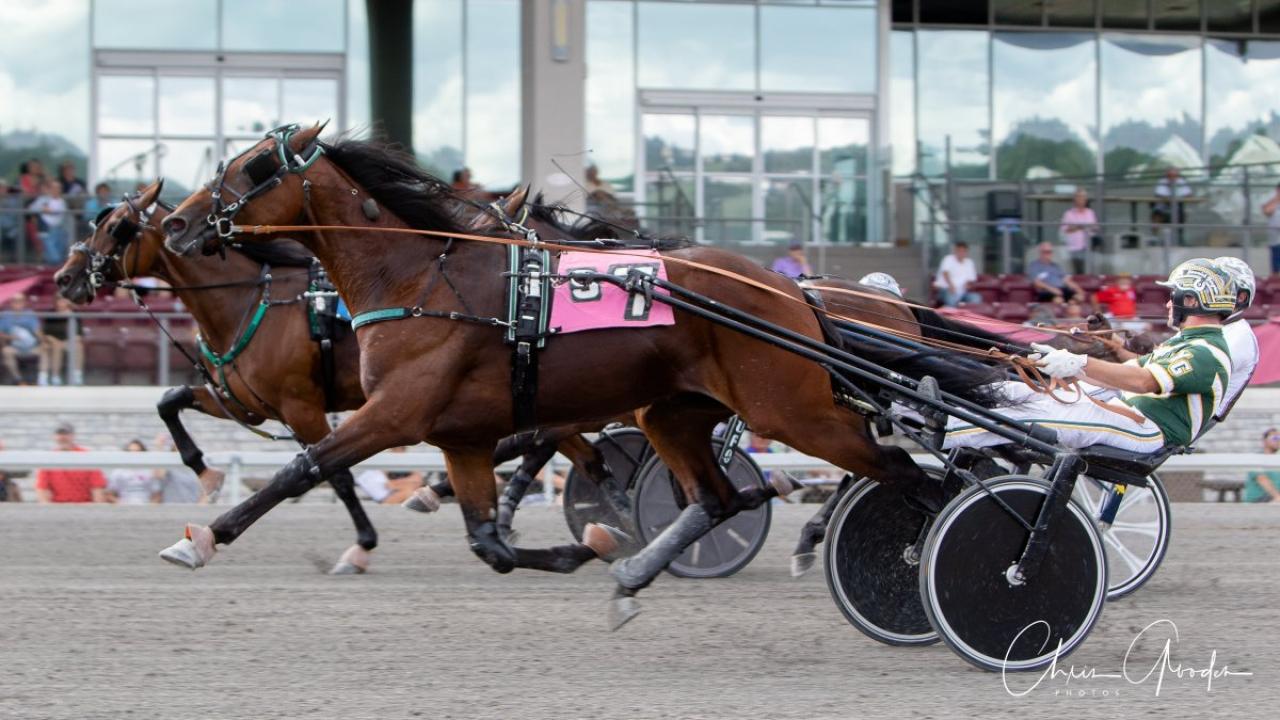 Osterc och Yannick Gingras vid finalsegern i Pennsylvania Sire Stakes ifjol. Foto: Chris Gooden