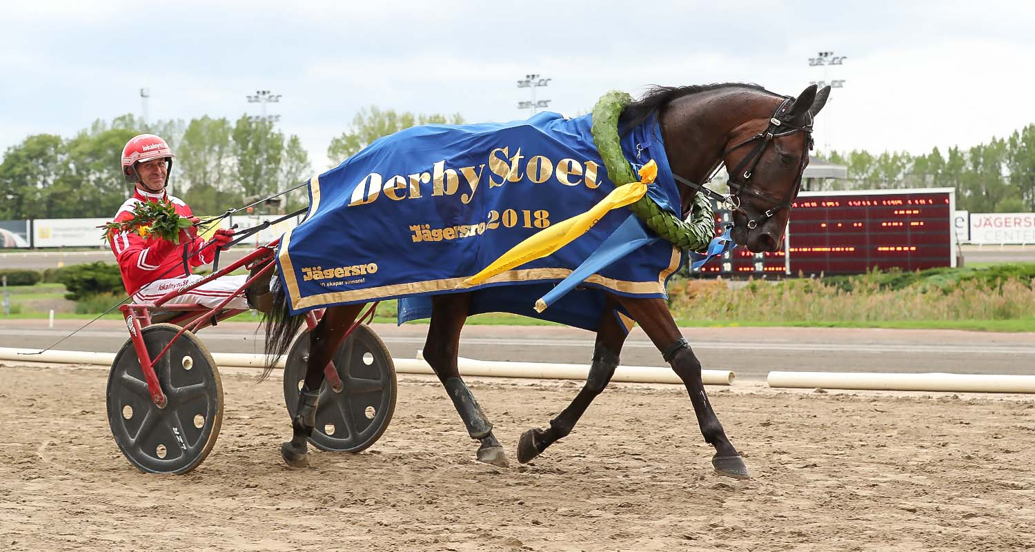 Run Chica Run och Peter Utersteiner. Foto Jeannie Karlsson/Sulkysport