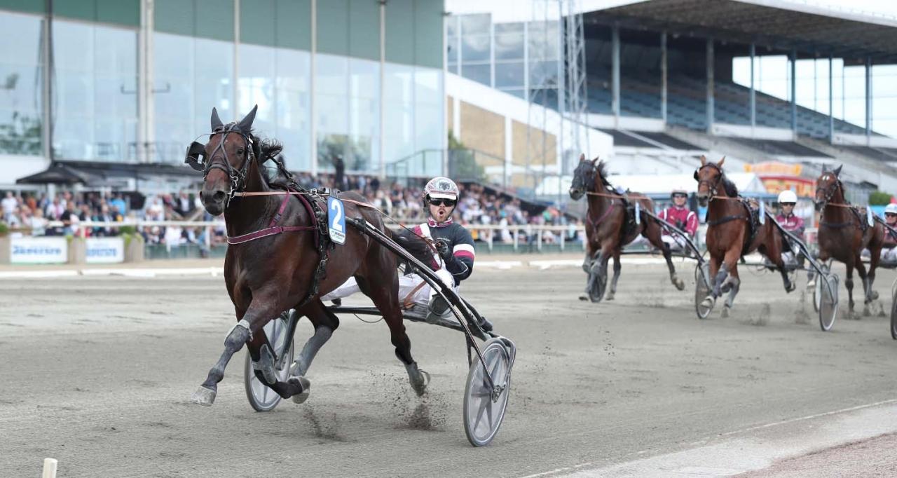 Ultion Face och Adrian Kolgjini startar från innerspår i Svampen. Foto Jeannie Karlsson/Sulkysport