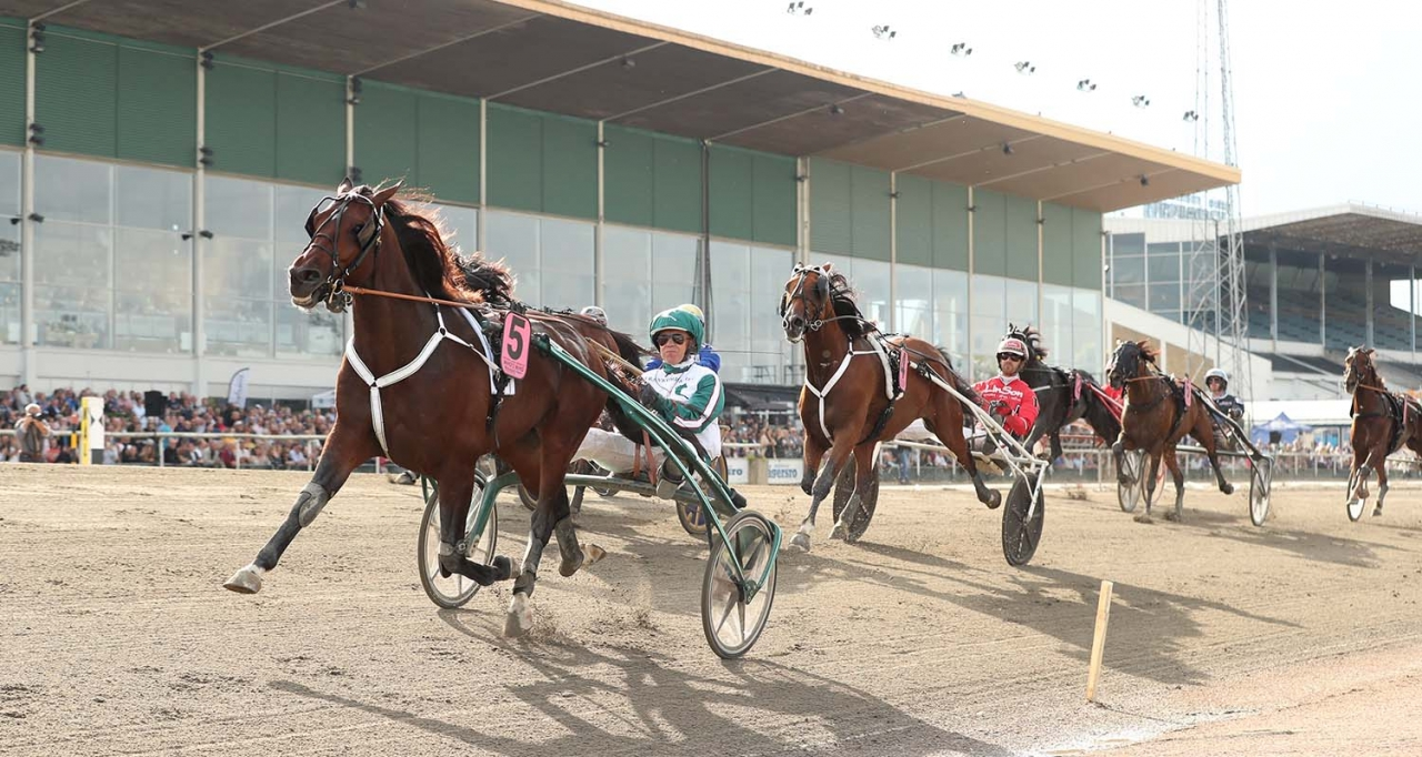 Who's Who och Örjan Kihlström vid segern i Svenskt Travderby. På lördag gör han debut i gulddivisionen på Mantorp. Foto Jeannie Karlsson/Sulkysport