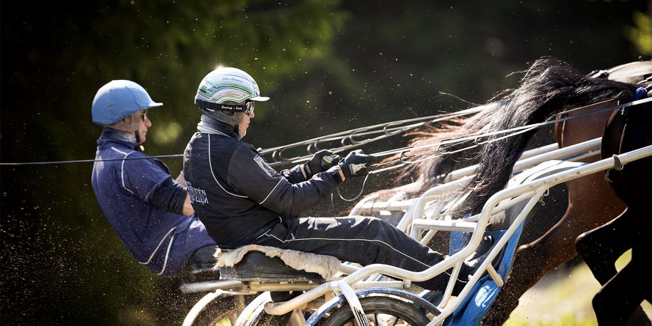 Träna som Timo Nurmos. Foto Mia Törnberg/Sulkysport