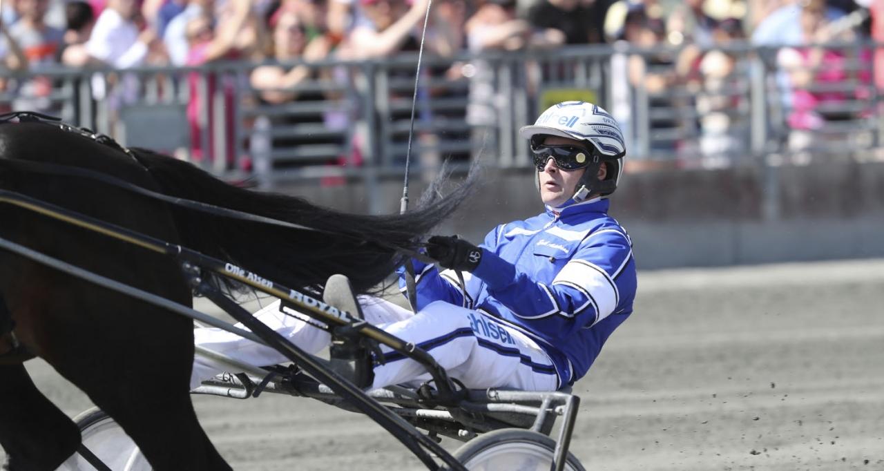 Erik Adielsson har valt häst i E3-finalen nästa helg. Foto Jeannie Karlsson