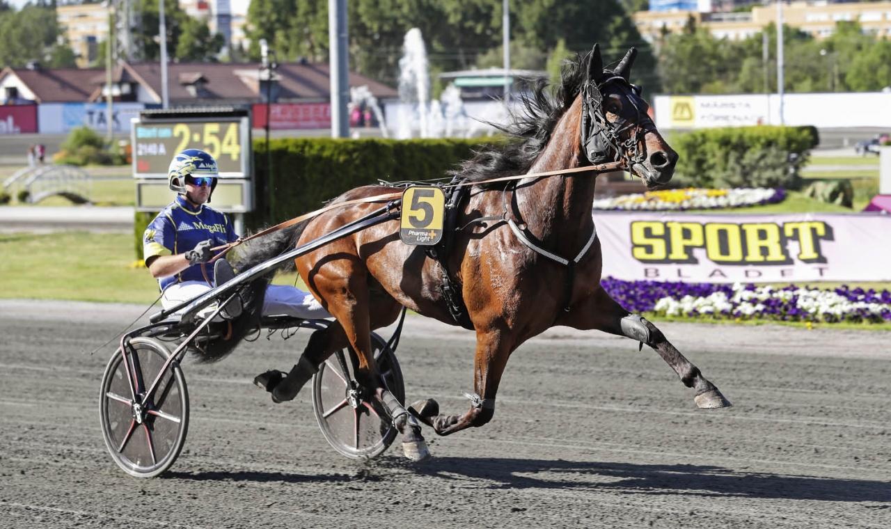 Floris Baldwin och Kristian Malmin startar i  bronsdivisionen. Foto Jeannie Karlsson/Sulkysport