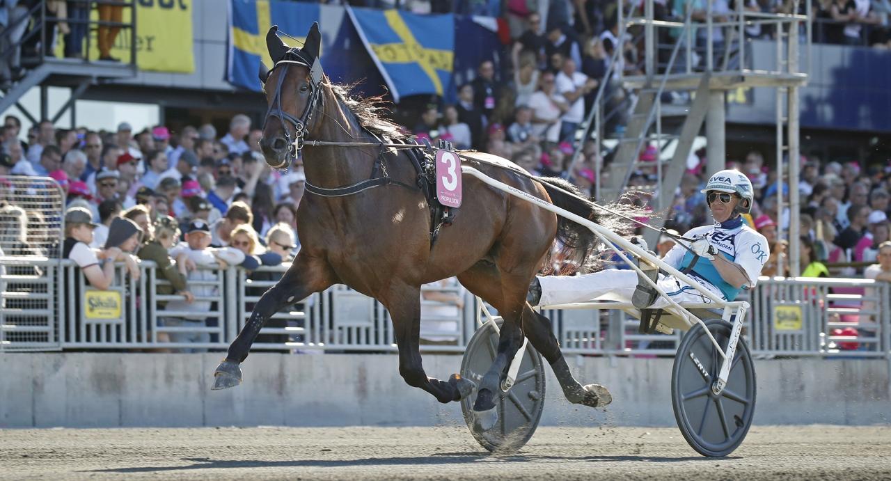 Propulsion. Foto Mia Törnberg/Sulkysport   Propulsion och Örjan Kihlström