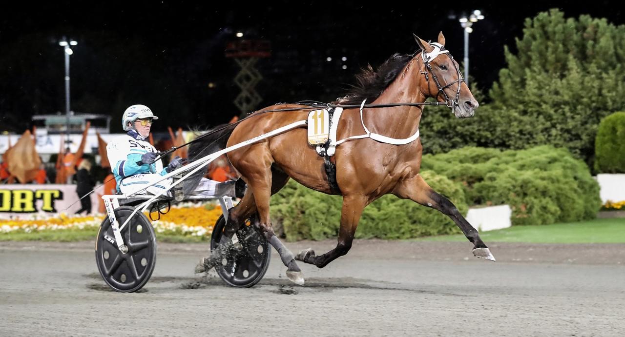 Double Exposure vid en tidigare seger och igår var hon i farten igen. Foto Mia Törnberg/Sulkysport.se