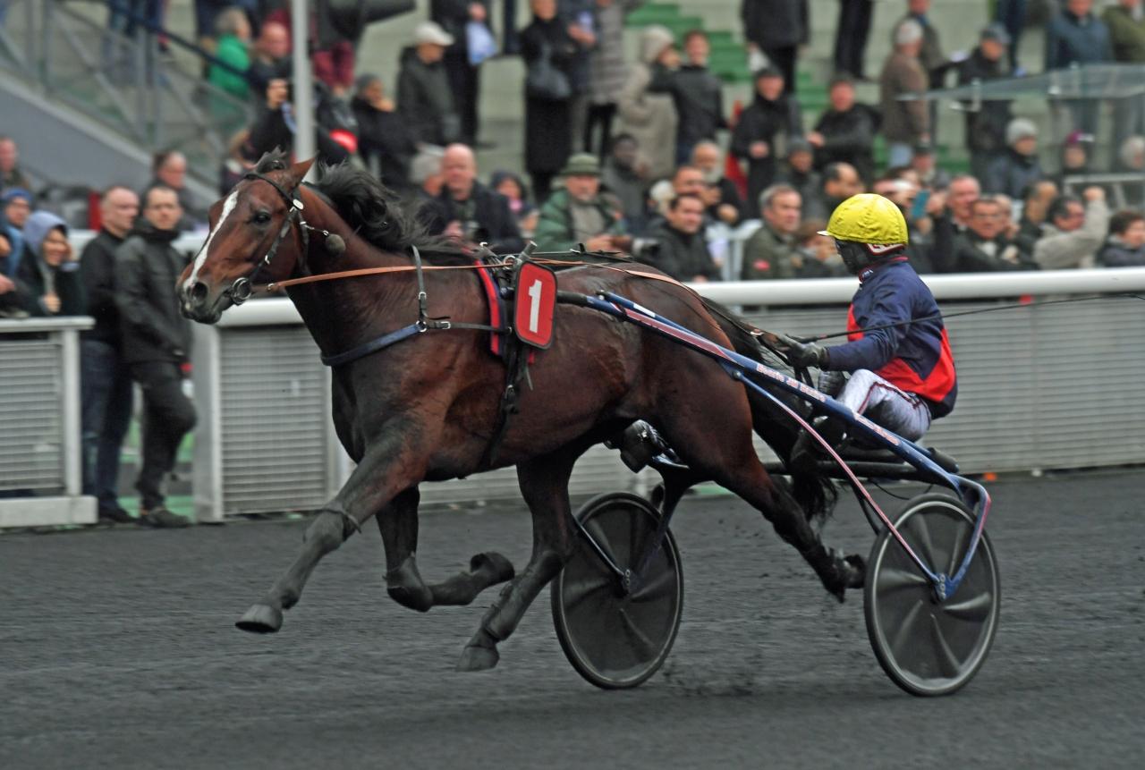 Looking Superb tog hem Prix Tenor du Baune tillsammans med sin tränare Jean Michel Bazire. Foto Gerard Forni.