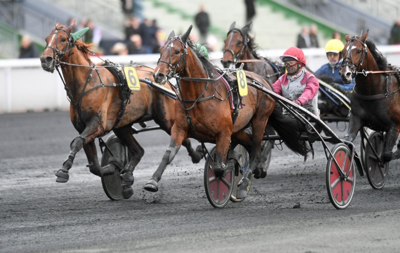 Invändige Gotland håller säkert ifrån sig General du Parc i spurten. Foto: Gerard Forni