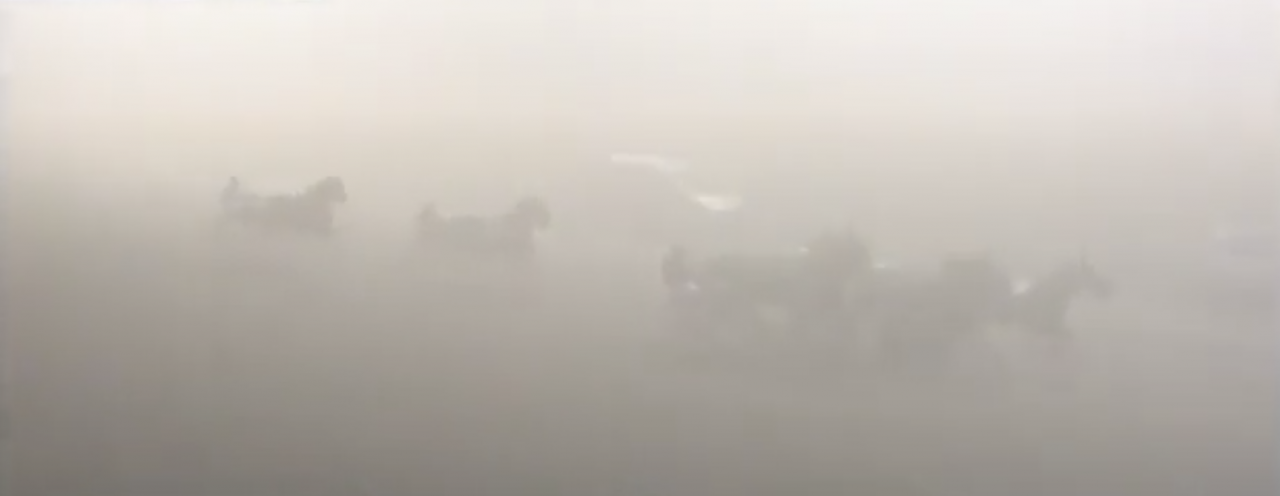 Dimman låg tätt över Vinovo-banan i Turin varpå man tvingades skjuta upp Campionato Masters tills på lördag. Bilden är tagen från det femte och sista loppet som hann köras. Foto: Ippica.biz