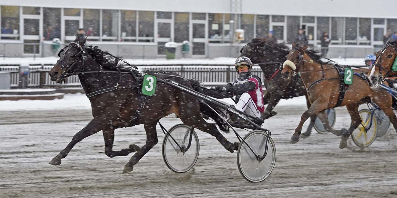 Jörgen S Eriksson bakom Copitex – en av två vinnare på Bollnästravet igår. Foto Christer Norin/ALN