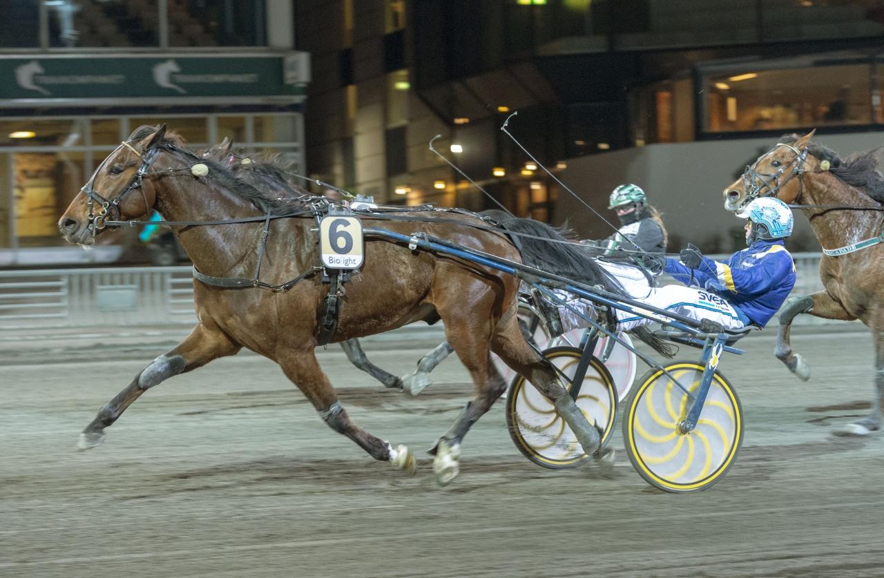 Output Pressure var en av två vinnare från Stefan Melanders stall. Foto: Tommy Andersson, ALN Pressbild