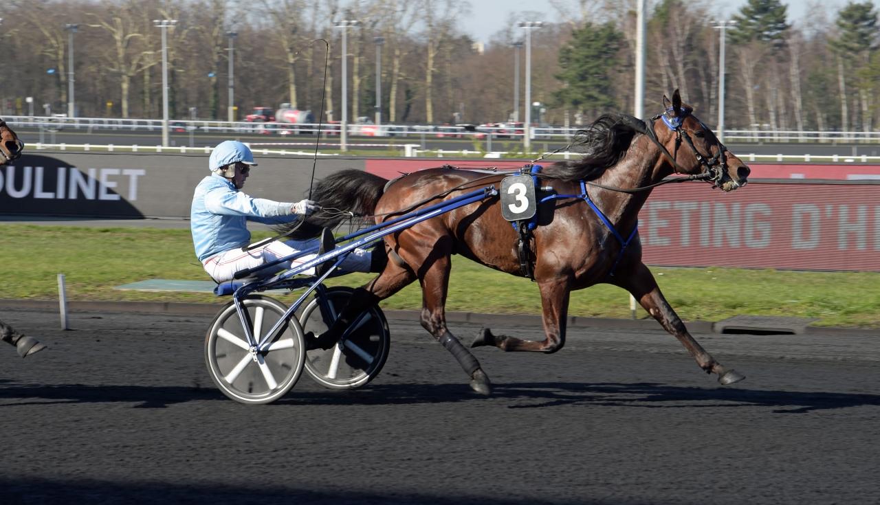 Pierre Vercruysse och Express Jet vinner Prix Ovide Moulinet. Foto: Gerard Forni