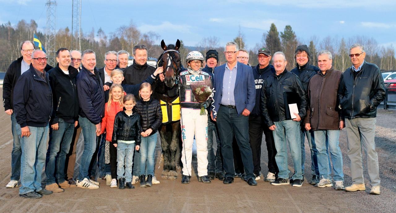 Totalt är det 20 delägare på Smedsbo Faksen. Hästen är favorit på V75 på lördag. Foto Berth Magnusson/ALN/Finish