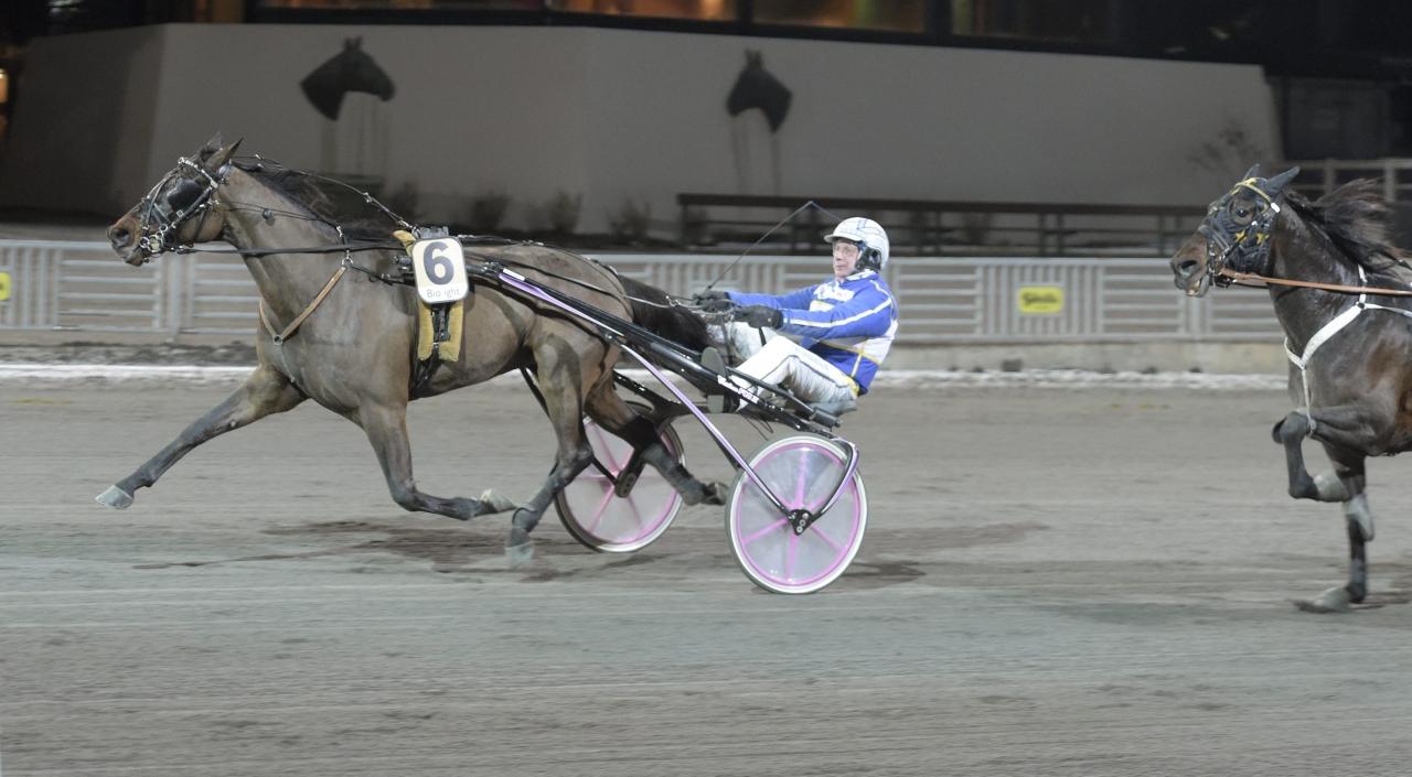 Herrera Boko var en av tre vinnare som Solvallas champion Jorma Kontio vann med ikväll. Foto Leif Norberg/ALN Solvalla