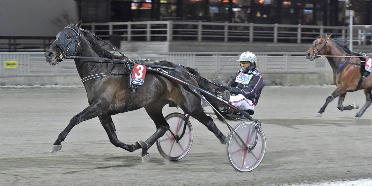 Fortune Mearas segrade i det fem hästar