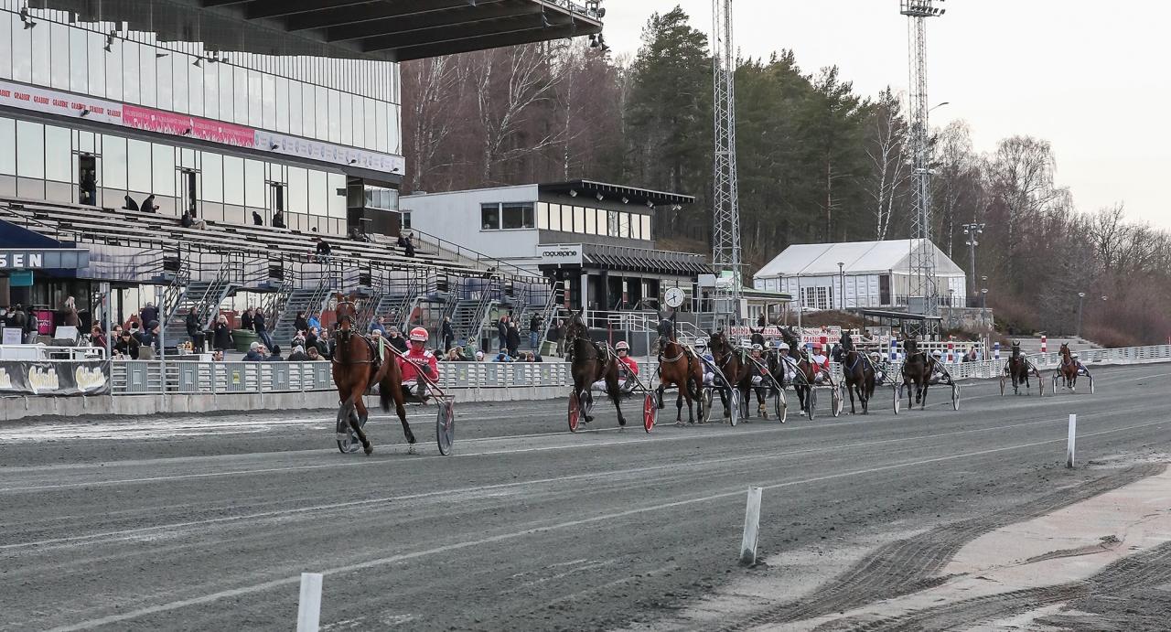 Solvalla inleder helgen med högklassiga tävlingar i form av Margaretas Tidiga Unghästserie och V75-finaler. Foto Jeannie Karlsson/Sulkysport